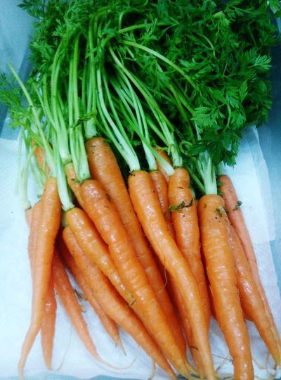 Baby Carrots Check This Out