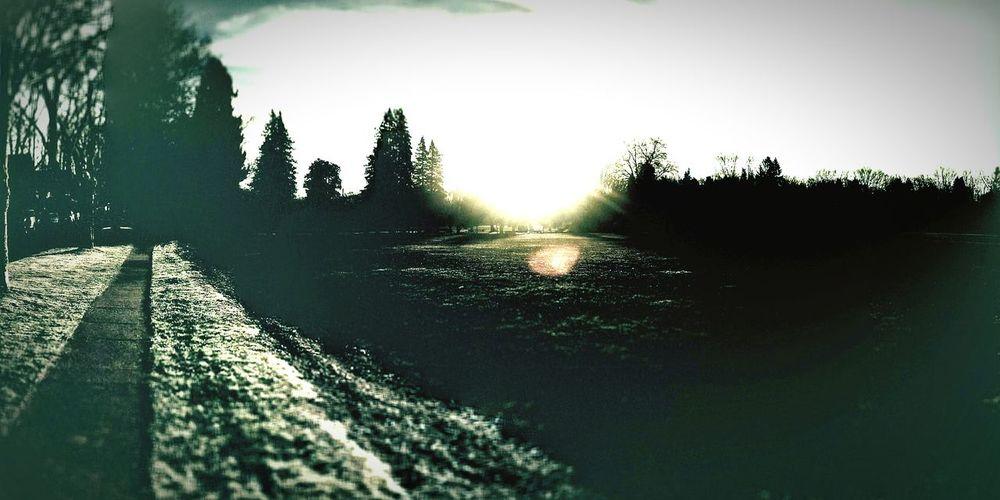 Furious Sunrise