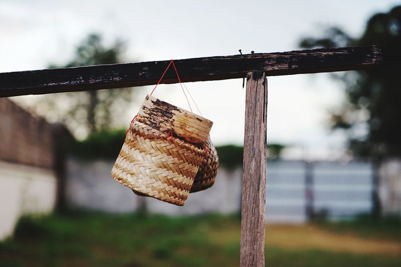 Sticky rice container Container Sticky Rice Box EyeEm Selects Hanging Focus On Foreground No People Day Close-up Nature Outdoors Wood - Material Rope Protection Security Luck Selective Focus Clothing Drying Clothesline Sky Metal Tree Plant