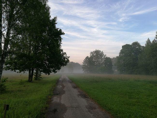 Foggy evening in Valmiera, Latvia