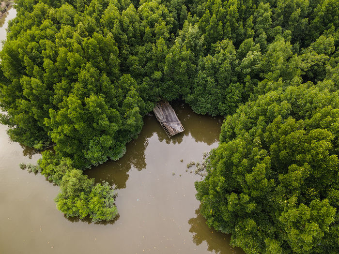 An aerial side view of an old sunken ship
