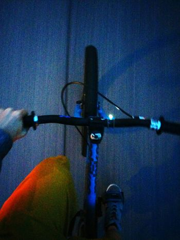 On A Roll with Holly The Bike / Late Night Biking