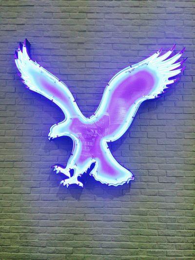 Hi! 越谷レイクタウン American Eagle