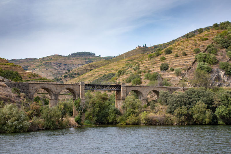 Douro riverbank with vineyards and olive groves Douro  Portugal Arch Arch Bridge Arched Architecture Beauty In Nature Bridge Bridge - Man Made Structure Built Structure Connection Day Mountain Nature No People Outdoors Plant River Scenics - Nature Sky Tranquility Transportation Vineyard Water