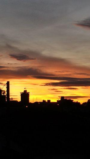 City Urban Skyline Sunset Tree Silhouette Cityscape Dramatic Sky House Sky Architecture