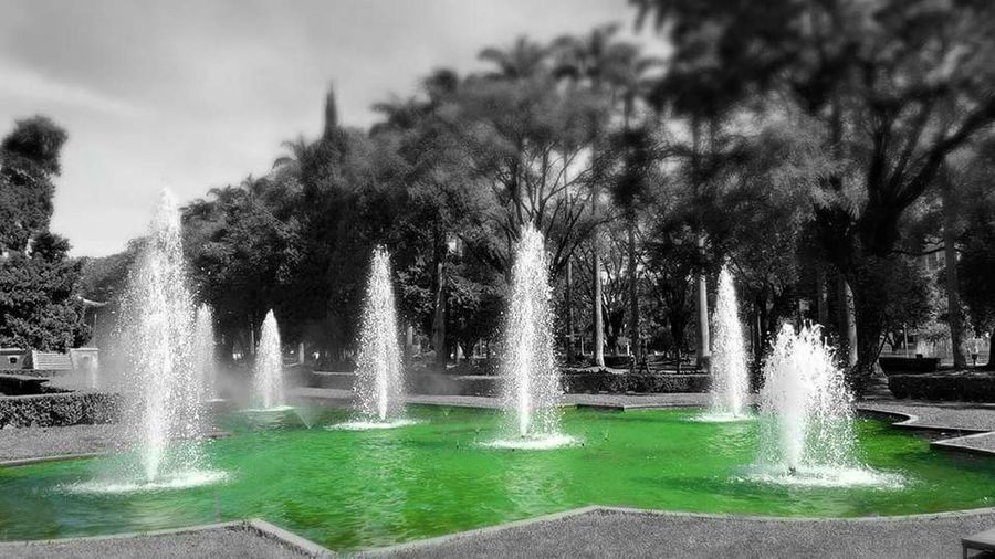 Tree Water Fountain Outdoors Nature No People Day Irrigation Equipment Beauty In Nature Sky Traveling Weekend Travel Destinations Traveller Weekend Fun Travel Photography Travel Brazil Nature Beauty In Nature