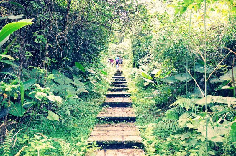 The Traveler - 2015 EyeEm AwardsThe Adventure Handbook Enjoying Nature Trail / Ricoh Ricoh Gr