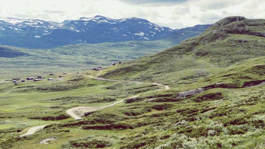The winding road... Norway Landscape Norway Nature Road Roadtrip Summertime Klaquax_Norway