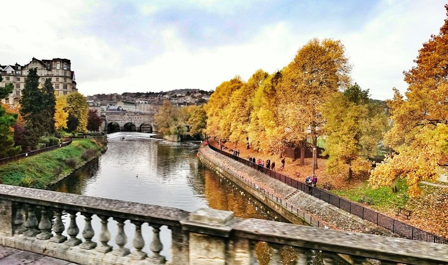 City Of Bath Uk Tree Sky Water Outdoors Building Exterior Nature Day No People EyeEmNewHere Bridge Fall Yellow Vintage