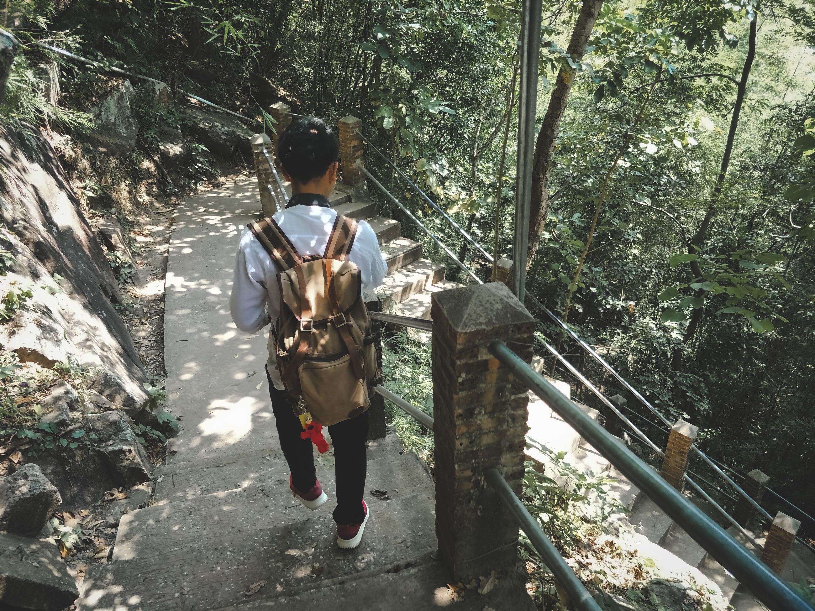 rear view, real people, one person, plant, nature, tree, full length, day, lifestyles, adventure, leisure activity, hiking, casual clothing, forest, mountain, walking, men, standing, beauty in nature, outdoors