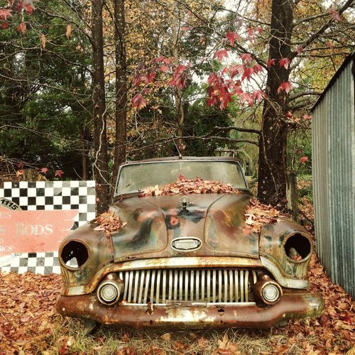 Abandoned Australia Autumn Bush Bush Car Car Chequered Flag Classic Classic Car Country Countryside Day Fall Fashion Grill Headlights Metal No People Oldschool Outdoors Retired Rural Rusty Adapted To The City