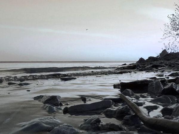 Sky Water Sea Beach Land Horizon Over Water Horizon Beauty In Nature No People Solid