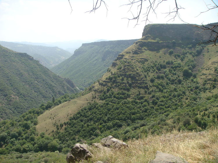 Green cayon in Armenia. Canyon Armenia Travel Destination Panorama Beauty In Nature Day Green Color Growth Landscape Lush Foliage Mountain Nature No People Non-urban Scene Outdoors Scenics Sky Tranquil Scene Tranquility Tree Growing Mountain Range Plant Life Idyllic Countryside Greenery
