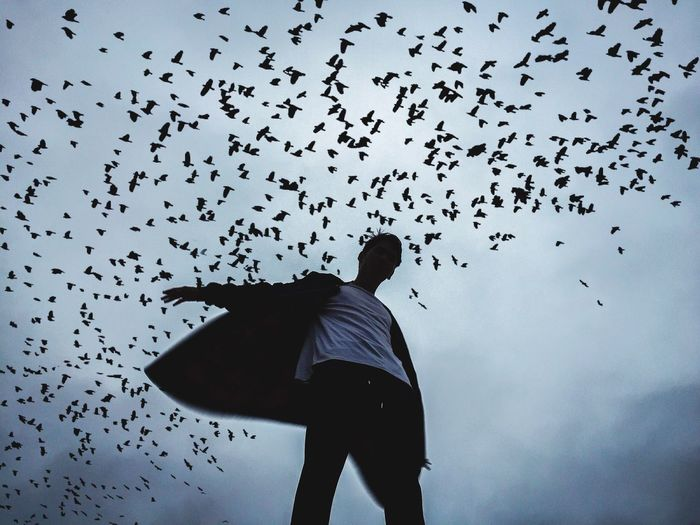Low angle view of man standing under silhouette birds flying against sky