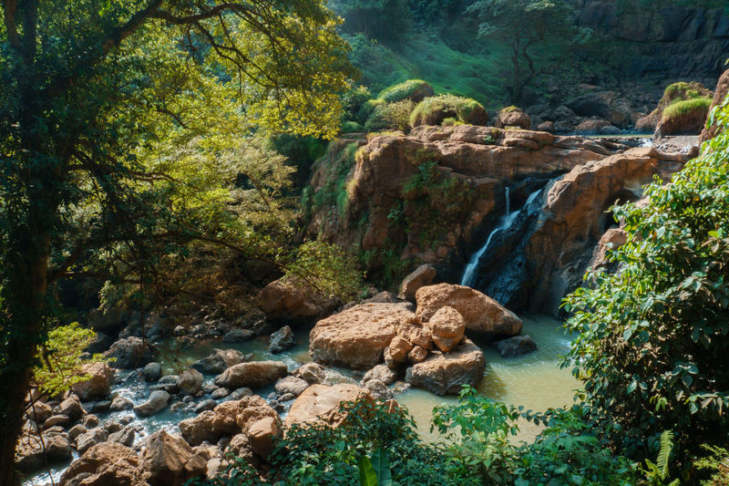 Cirug Cimarinjung Beauty In Nature Day Environment Flowing Flowing Water Forest Land Nature No People Non-urban Scene Outdoors Plant Rainforest River Rock Rock - Object Scenics - Nature Solid Stream - Flowing Water Tranquil Scene Tranquility Tree Water WoodLand