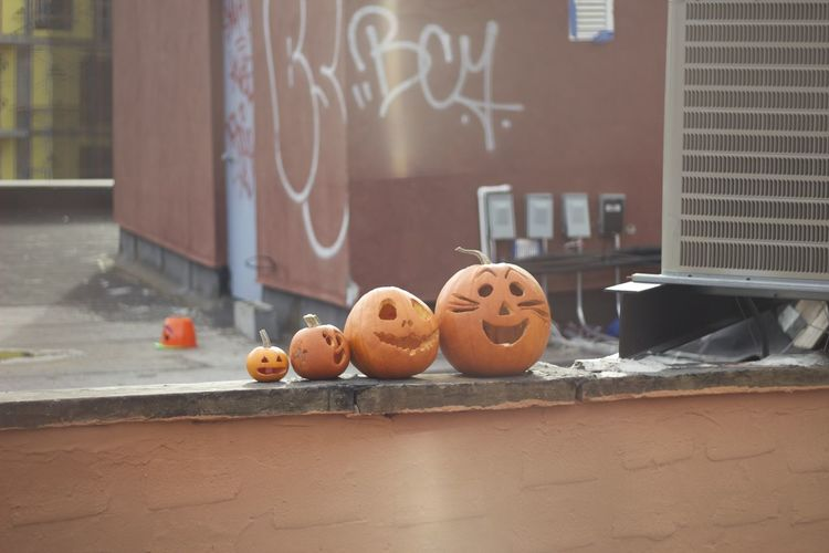 High angle view of jack o lanterns on retaining wall against building