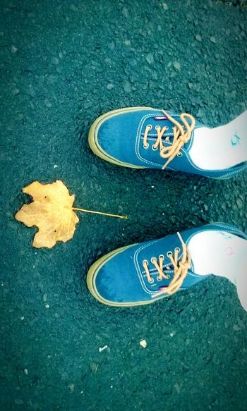 Looking at life from different angles. ❤📷🍂🍁🍃 * * Shoes Vans Vans Off The Wall Leaf Foggy Morning Asphalt Road Street Directly Above Lifestyles Quickpic Outdoors Yellow Leaf On Asphalt Blue Vans Love Photography Cool Shot Funpics