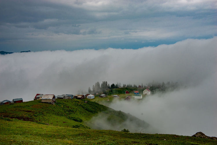 Gomismta, Georgia - village Gomismta, one of the highest villages in Gurian Region Beauty In Nature Cloud - Sky Day Environment Fog Grass Green Color Land Landscape Mountain Nature No People Non-urban Scene Outdoors Plant Scenics - Nature Sky Tranquil Scene Tranquility The Great Outdoors - 2018 EyeEm Awards The Traveler - 2018 EyeEm Awards