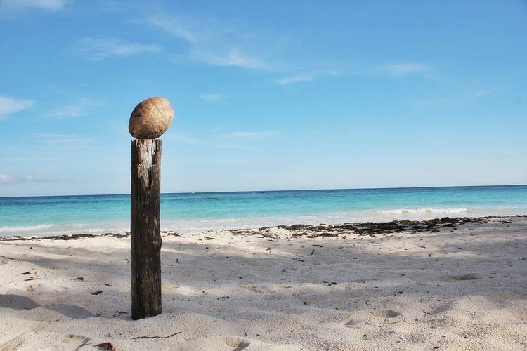 Coconut On Wooden Post On White Sand Beach Against Blue Sky