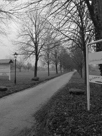 333/365 Allee Tree No People Day Outdoors Nature Beauty In Nature Sky Monochrome Blackandwhitephotography Blackandwhite Streetphotography Photo365 Bilsbekblog Photooftheday Sorcerer86 Honor9 Honorography Smartphoneography Eyeemgermany Eyeemprisdorf