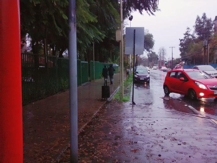 Rain Walking On The Rain Bus Stop Street