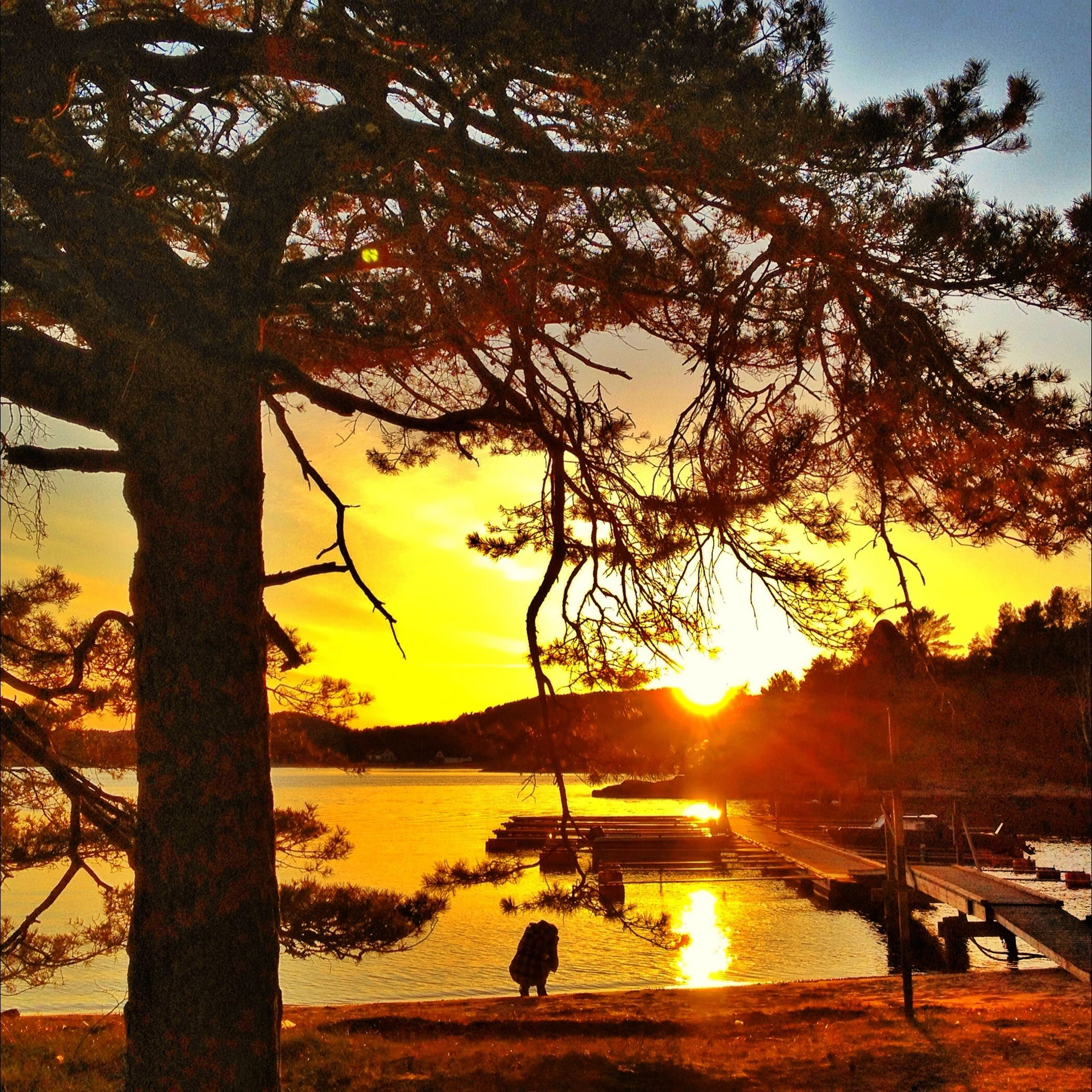 sunset, sun, water, silhouette, orange color, scenics, beauty in nature, tree, tranquility, tranquil scene, nature, sky, sunlight, nautical vessel, sea, idyllic, lake, reflection, transportation, mode of transport