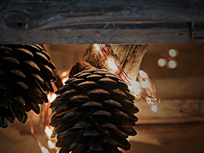 pinien Z A P F E N Pine Cone Indoors  Celebration Hanging Lights Light And Shadow Seasonal Decoration Coziness November
