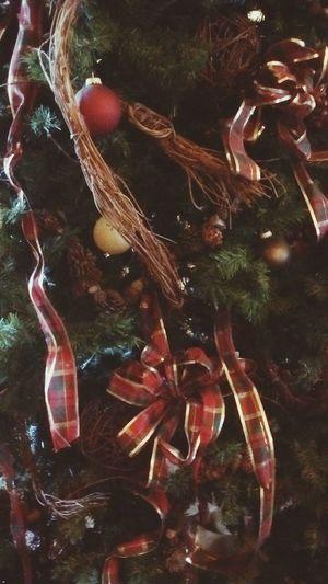 X Mas Tree Ordimen Ordiments Old Tree EyeEm Christmas Photography Tree