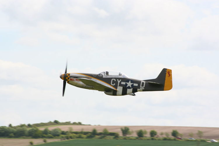 Mustang low pass Mustang Plant Flight History Outdoors Sky Speed Ww2warbirds