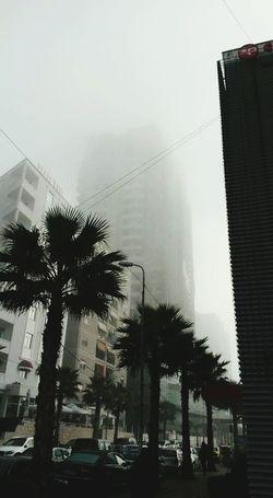 Foggy Morning PhonePhotography Durres Albania