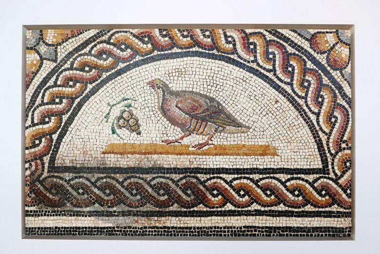 EyeEm Selects Mosaic Close-up No People Indoors  Day Mosaic Roman Roman Art History Art Culture Musée Gallo-Romain Museum Roman Museum
