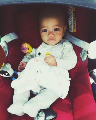 My little penguin Babyhaq First Eyeem Photo