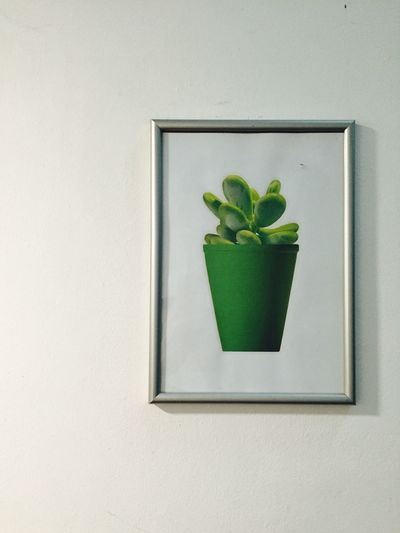 Portrait of a portrait of a plant Green Color Green Plant Portrait Framed Picture Frame Wall Photo Of A Plant Hanging On The Wall From My Point Of View Singapore Streetphotography Taking Photos