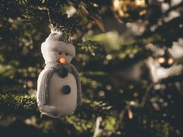 Cuddly Toy Cuddly Cute Snowman Xmas Decorations Xmas Tree Xmas #Christmas Christmas Christmas Tree Christmas Decoration Celebration Tree Christmas Ornament Hanging Focus On Foreground Close-up