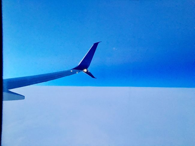 Flying High Blue Clear Sky No People Flying Airplane Low Angle View Sky Day Airplane Wing Outdoors Close-up Nature