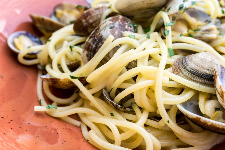 Close-up of pasta and clam in plate