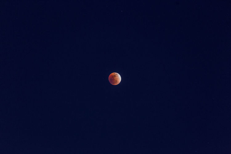Moon Bloodmoon Sky Nature Color Astronomy Night Moon Surface Planetary Moon Full Moon Low Angle View