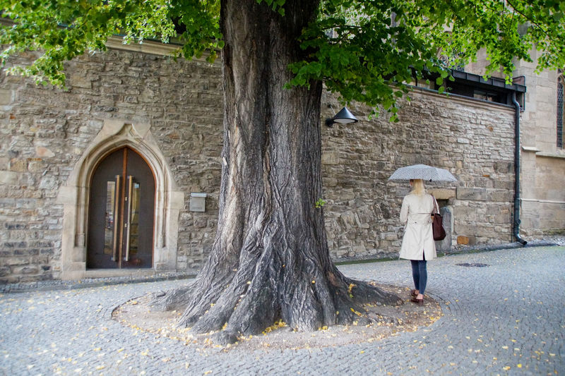 Full Length Of Woman With Umbrella Walking By Tree