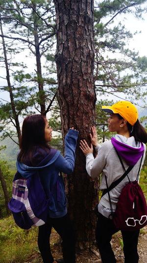 Women standing on tree trunk in forest