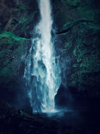 View of waterfall in forest at night