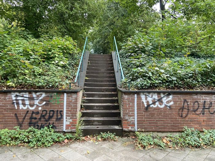 Staircase against trees