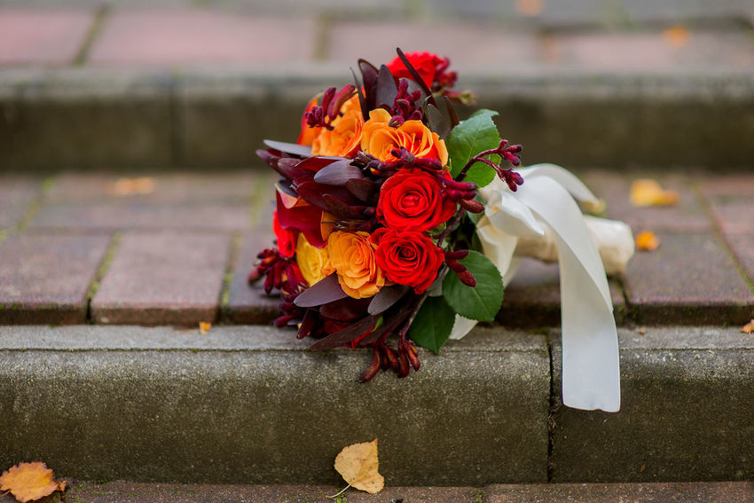 Wedding Bouquet Bride Bouquet Red Roses Wedding Autumn Weeding Beauty In Nature Bouquet Cemetery Close-up Day Fall Fall Wedding Flower Flower Head Fragility Freshness Leaf Memorial Nature No People Outdoors Petal Real People Rose - Flower Spirituality Yellow Roses