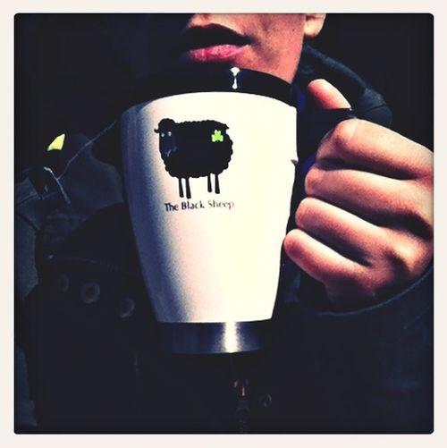 Color Portrait Tea Time Make A Break Black Sheep
