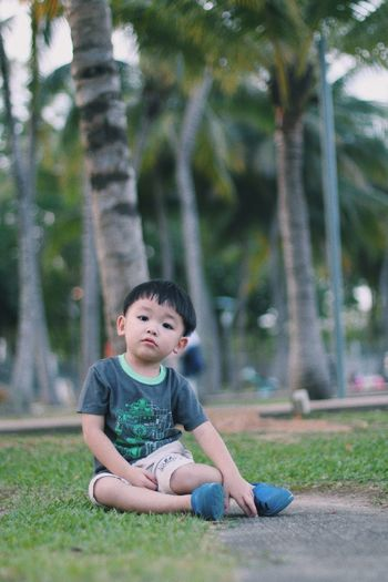 Black Hair Casual Clothing Childhood Day Full Length Grass Nature One Person Outdoors Park - Man Made Space People Real People Sitting Tree
