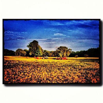 #tractor #farm #landscape #clouds #sky #cloud #blueskys #sunshine #cloudporn #skyporn #skysnappers #nature #blue #white #openfields Clouds Openfields Nature Sunshine Sky Landscape Blue Tractor Cloud Cloudporn White Farm Skyporn Skysnappers Blueskys