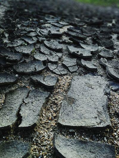 Detail shot of cracked land