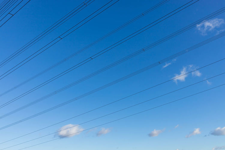 low angle view of birds flying against blue sky Animal Animal Themes Beauty In Nature Bird Blue Cable Cloud - Sky Connection Day Electricity  Fuel And Power Generation Januar Low Angle View Nature No People Outdoors Power Line  Power Supply Sky Stromleitungen Technology Telephone Line Vapor Trail Vertebrate