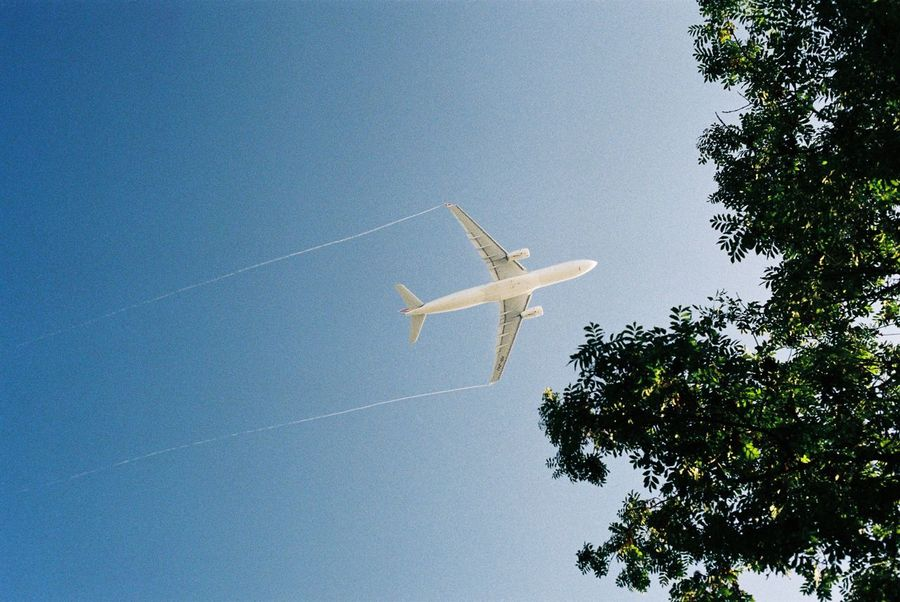 35mm Film Analogue Photography Film Photography Filmisnotdead Air Vehicle Tree Transportation Sky Airplane Nature Plant Mode Of Transportation Flying Travel Journey Mid-air on the move