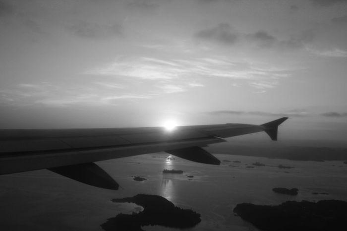 #B&W #Black&White #airplane #blackandwhite #grayscale #sunset #sun #clouds #skylovers #sky #nature #beautifulinnature #naturalbeauty #photography #landscape #travelling #trip