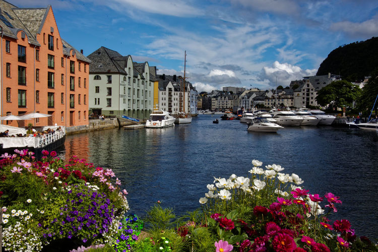 Architecture Built Structure Building Exterior Water Cloud - Sky Sky Plant Nautical Vessel Flowering Plant Flower City Building Transportation Mode Of Transportation Nature Residential District Day No People River Outdoors Sailboat Norway Norge Norway🇳🇴 Ålesund, Norway